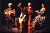 Flamenco muzika gitara