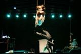 13. Festival plesa i neverbalnog kazališta